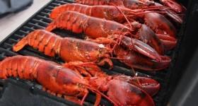 lobster-phuket-2