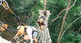 zipline_1_resize-to-280x150-copy-2